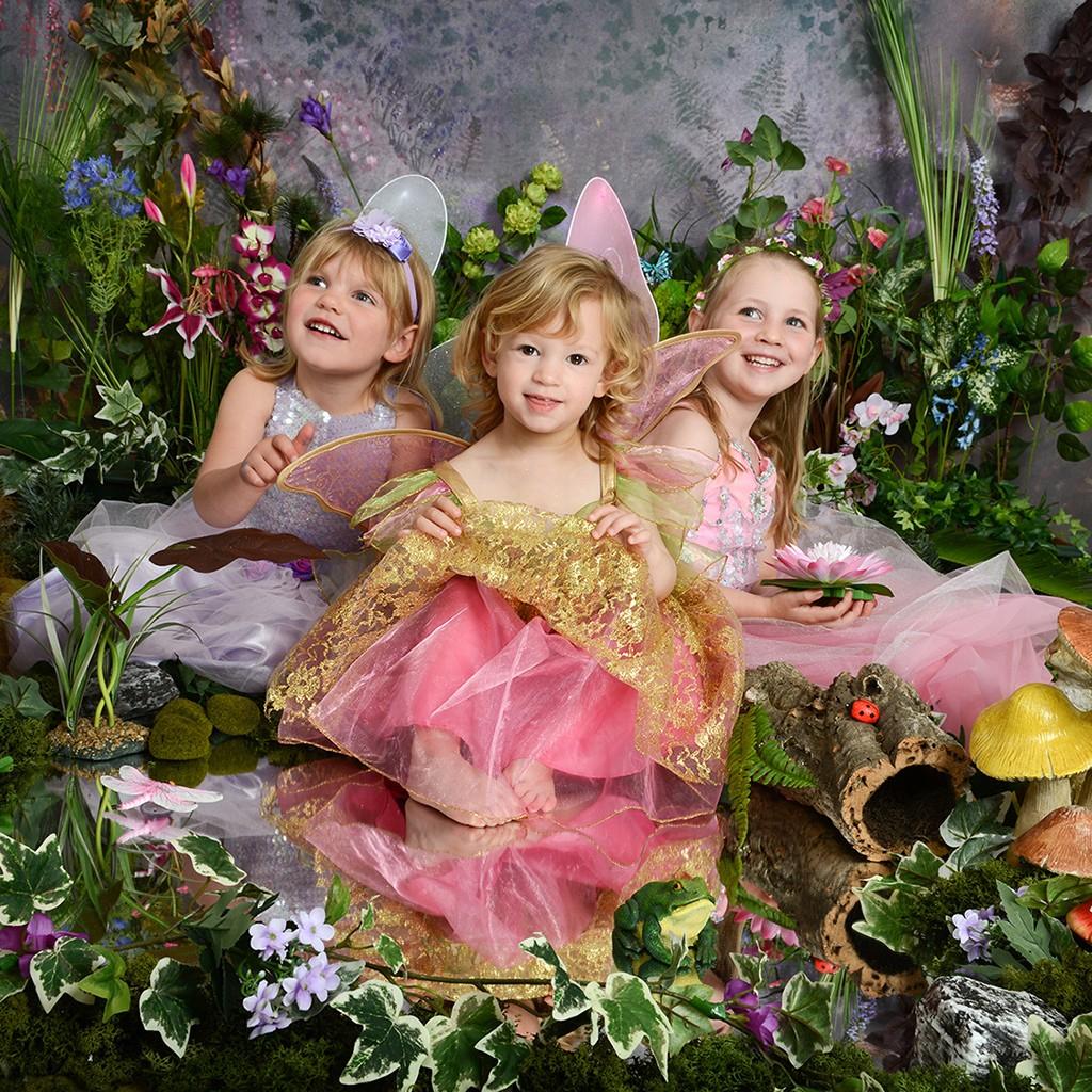 , The Fairy Experience