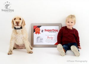 , SuperDog of the Month